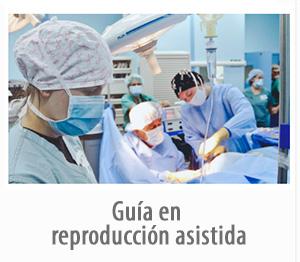 Guía en reproducción asistida